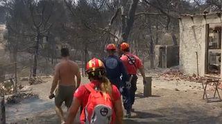 Frantic search for missing begins after devastating Greek wildfires