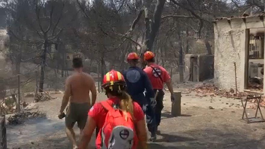 Waldbrandgefahr in Griechenland sinkt