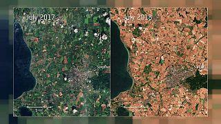 Uydu görüntüleri Avrupa'nın kuzeyini vuran kavurucu sıcakları gözler önüne serdi