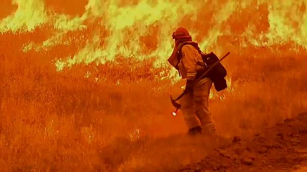 California wildfires kill six