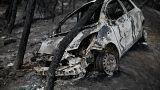 Autoridades gregas suspeitam de fogo posto