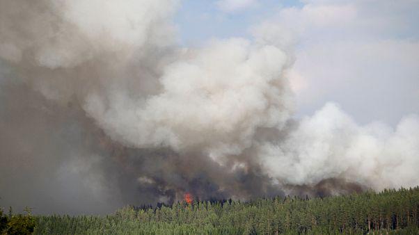 İsveç'te orman yangınları
