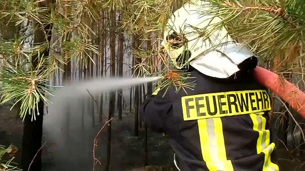 Brandenburg: Waldbrand unter Kontrolle