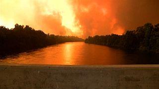 Carr-Feuer wütet in Nordkalifornien