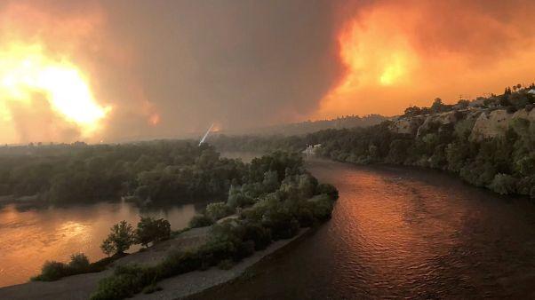 آتش سرکش جنگلهای کالیفرنیا جان یک آتشنشان را گرفت