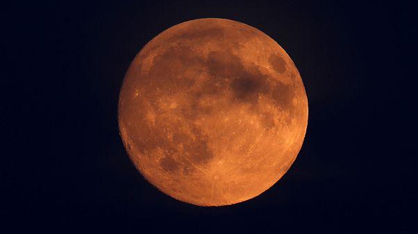 شاهد: تحضيرات استثنائية في الهند لمشاهدة خسوف القمر