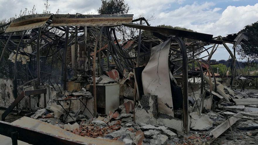 Греки ищут виновников трагедии