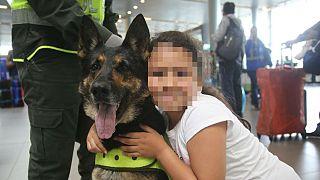 Uyuşturucu karteli narkotik köpeğinin başına 70 bin dolar ödül koydu
