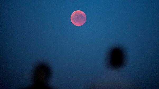 ویدئو و آلبوم عکس از ماه گرفتگی در کشورهای مختلف