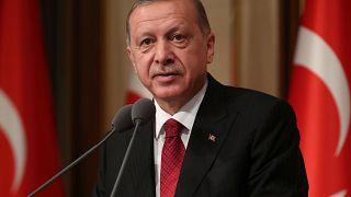'Cumhurbaşkanı Erdoğan Almanya'yı ziyaret edecek'