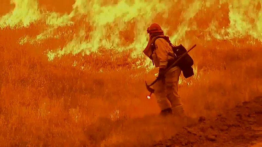 مقتل 6 أشخاص بينهم طفلان في حرائق غابات بكاليفورنيا