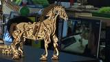 The self-propelled wooden models that are delighting the world