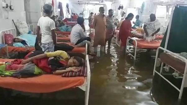 Fish in hospital as rains kill 80 in north India