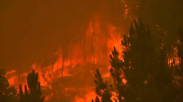Todos os os distridos de Portugal continental em alerta por causa dos incêndios