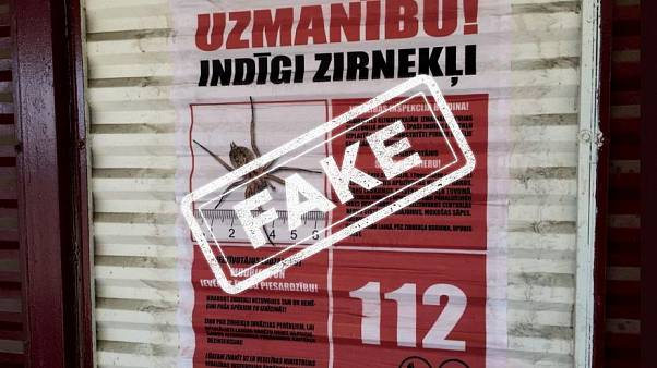 La Lettonia contro il diffondersi della falsa notizia sui ragni mortali | The Cube