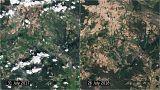 Satellitenbilder zeigen Dürre rund um Berlin im Vergleich 2017/2018