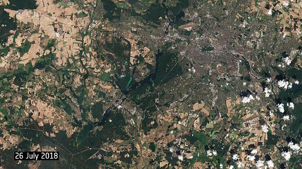برلين تكتسي لونا بنيا مصفرا في صور حديثة للأقمار الصناعية بسبب موجة الحر