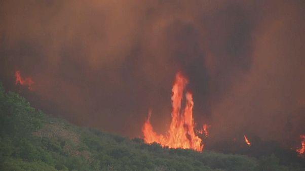 Калифорния: пожары взять под контроль не удается