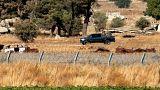 وكالات روسية: القوات الإيرانية انسحبت من المنطقة الحدودية في الجولان السوري