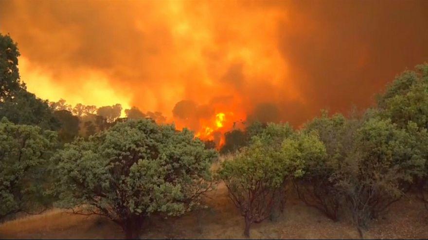 آتش در کالیفرنیا؛ آرام شدن وزش باد به آتشنشانان یاری میرساند