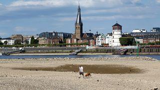 La ola de calor causa estragos en Alemania y Dinamarca