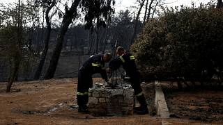 In Griechenland wird jetzt nach den Ursachen für die Tragödie gesucht.