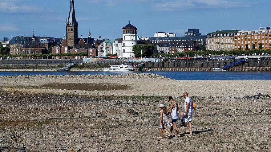 Alemania puede sufrir en breve un verdadero desastre ecológico