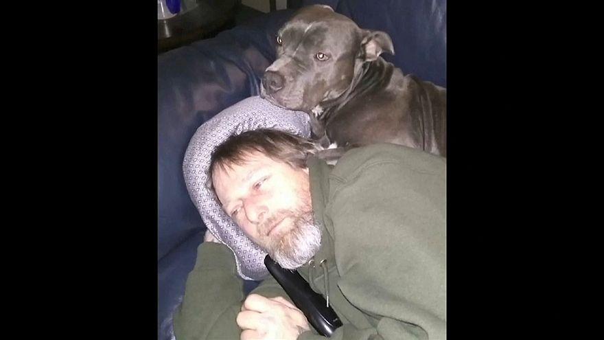 Homem amputado após lambidela de cão