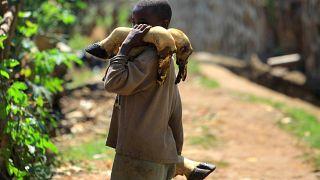 Kongo: WHO untersucht neue Ebola-Verdachtsfälle