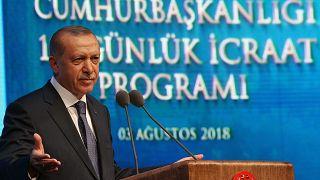 Erdoğan 100 günlük eylem planını açıkladı