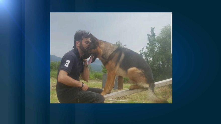 Indignación y conmoción en Italia tras el envenenamiento del perro Kaos