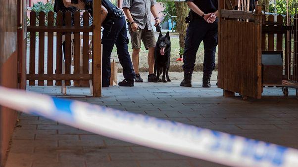 Mann mit Down Syndrom tot: Handelte Schwedens Polizei fahrlässig?