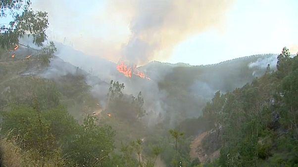 Calor e incêndios não dão tréguas em Portugal