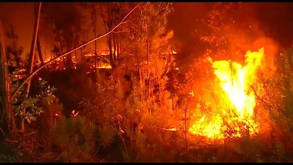 شاهد: فرق إطفاء برتغالية وإسبانية لاحتواء الحرائق الحدودية