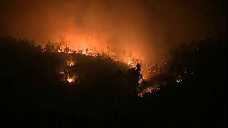 """Waldbrände im """"Glutofen"""" Portugal"""