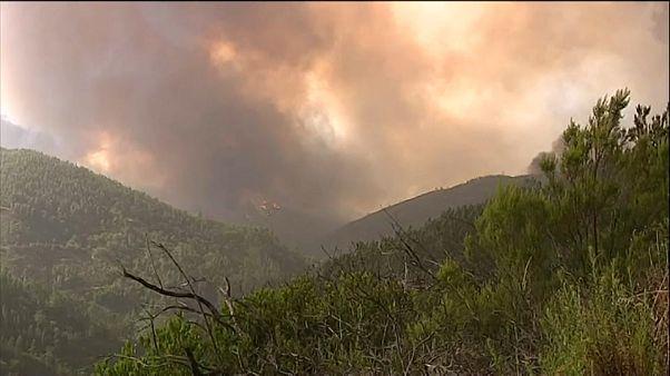 El fuego asola Portugal y España