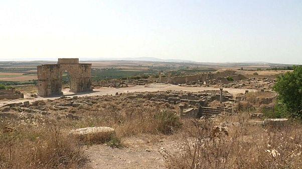 Volubilis : le trésor antique du Maroc