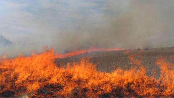 آتش در هورالعظیم