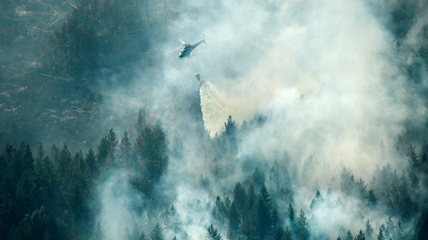 Uniós segítség a svéd erdőtüzek oltásában