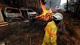Portekiz'de orman yangını turistik bölgeyi sardı