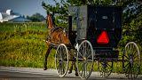ABD'de Amişlerin kullandığı bir at arabası