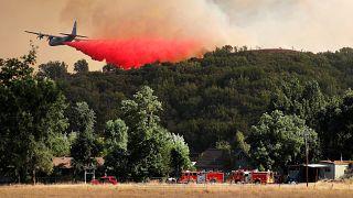 Kaliforniya'da söndürülemeyen alevler eyalet tarihinin en büyük orman yangınına dönüştü
