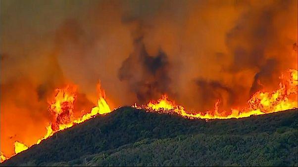 kaliforniya yangınlar