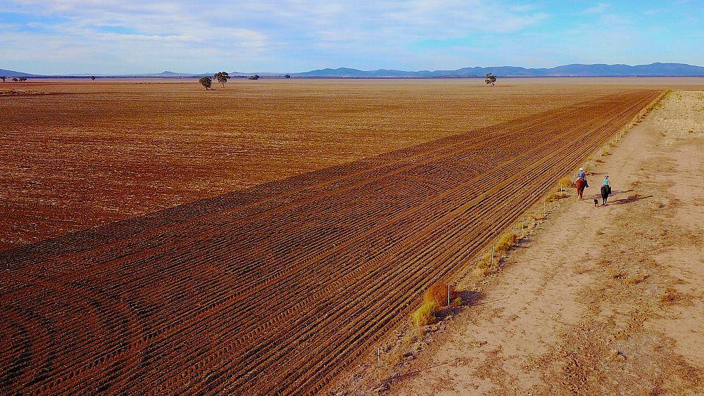 Australian farm output hit by drought
