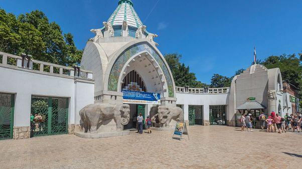 Betiltották a PET-palackot a budapesti állatkertben
