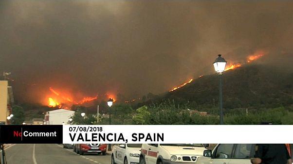 Waldbrand in der Nähe von Valencia hält Feuerwehr weiter in Atem