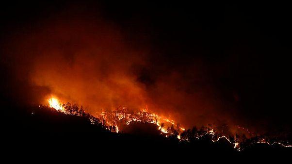 Waldbrände in Kalifornien - ist die Erde bald unbewohnbar?