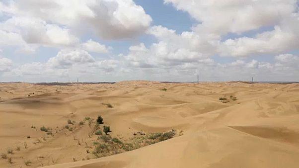 Kína megállítaná a sivatagot
