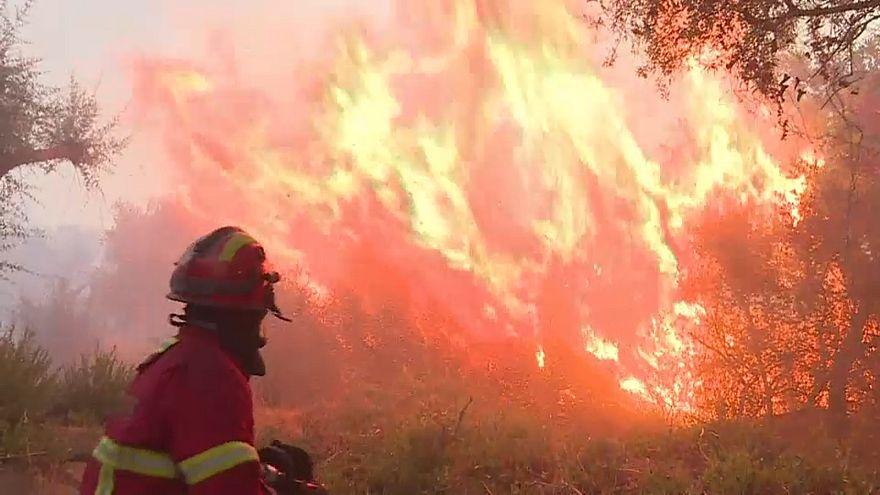 Fogo de Monchique obriga à retirada de cerca de 300 pessoas