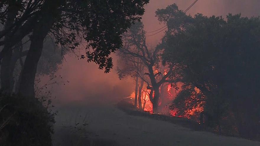 Portuguese wildfire still burning